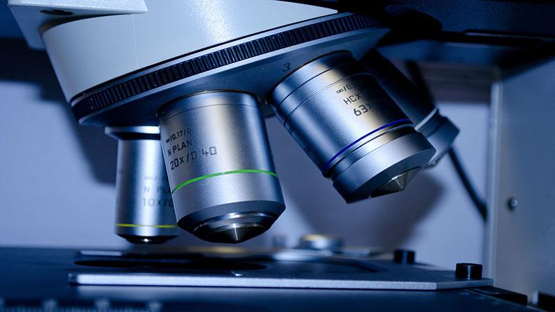 UTILISATION DU MICROSCOPE RÉALISATION D'UNE PRÉPARATION MICROSCOPIQUE