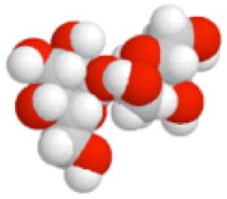 Molécule de sucres composée d'atomes de carbone, d'hydrogène et d'oxygène.